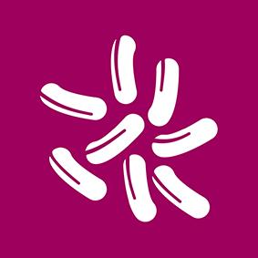 Botulinsafe Logo