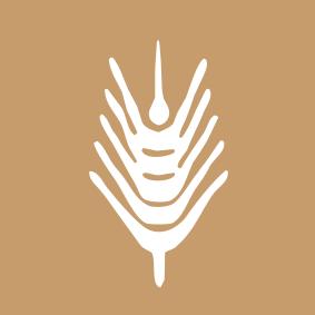 innocereal logo