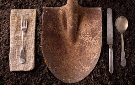 voeding landbouw farm to fork
