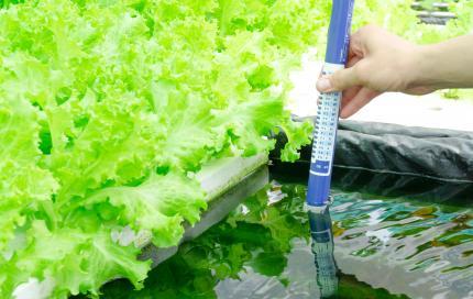 Sensor meet water van sla