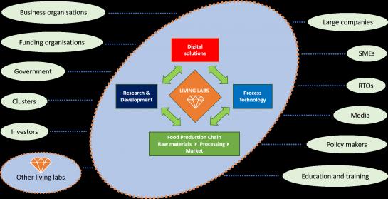 digital innovation ecosystem