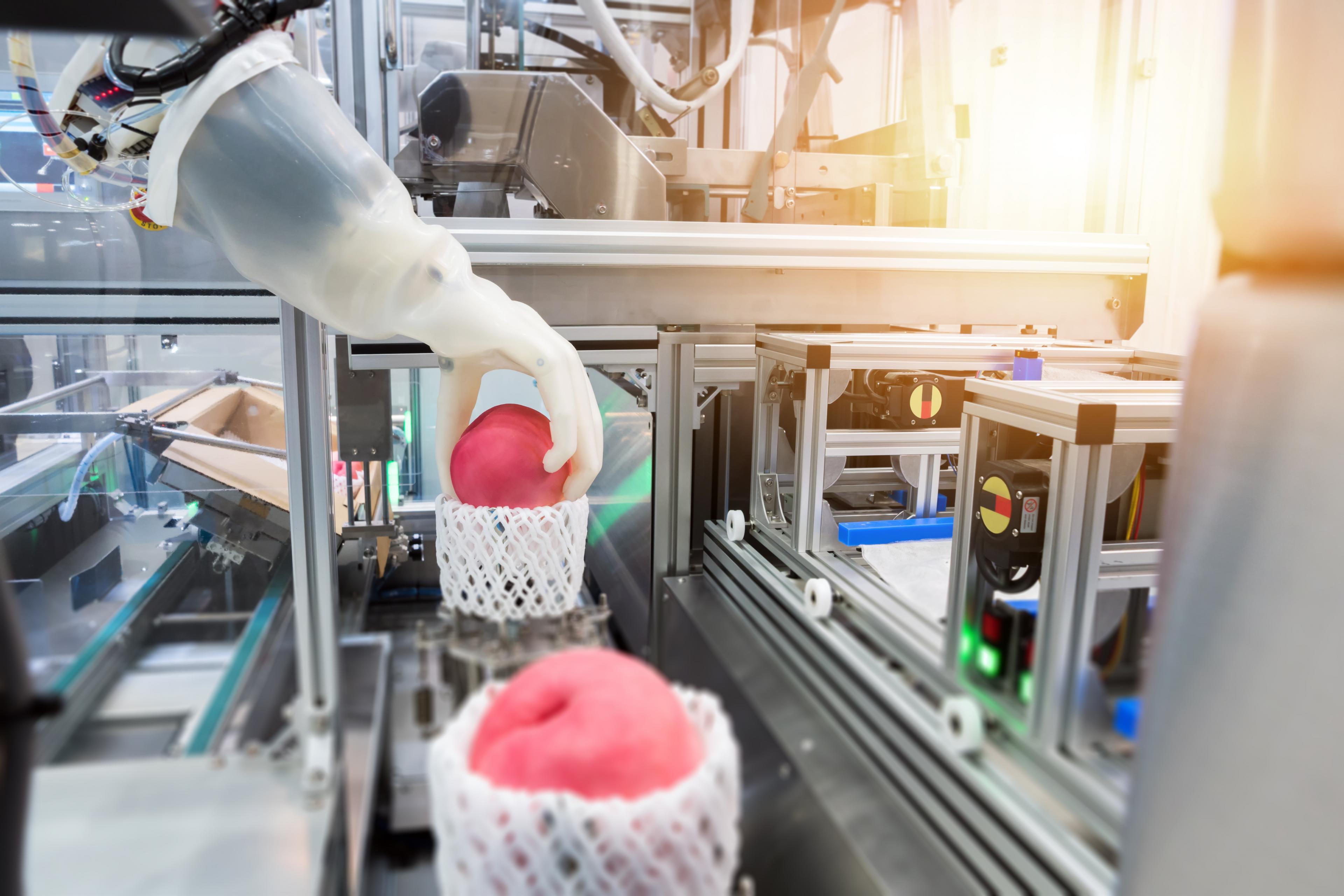productie fruit robot