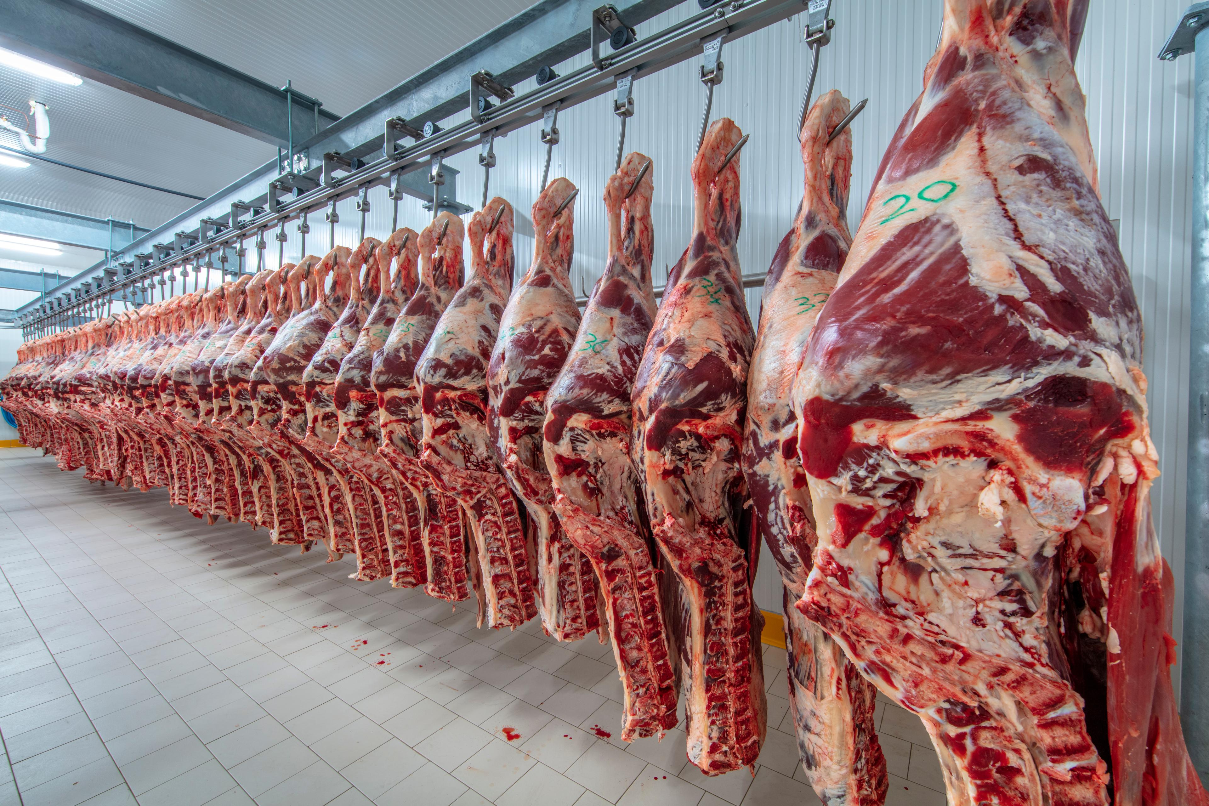 Vlees karkassen