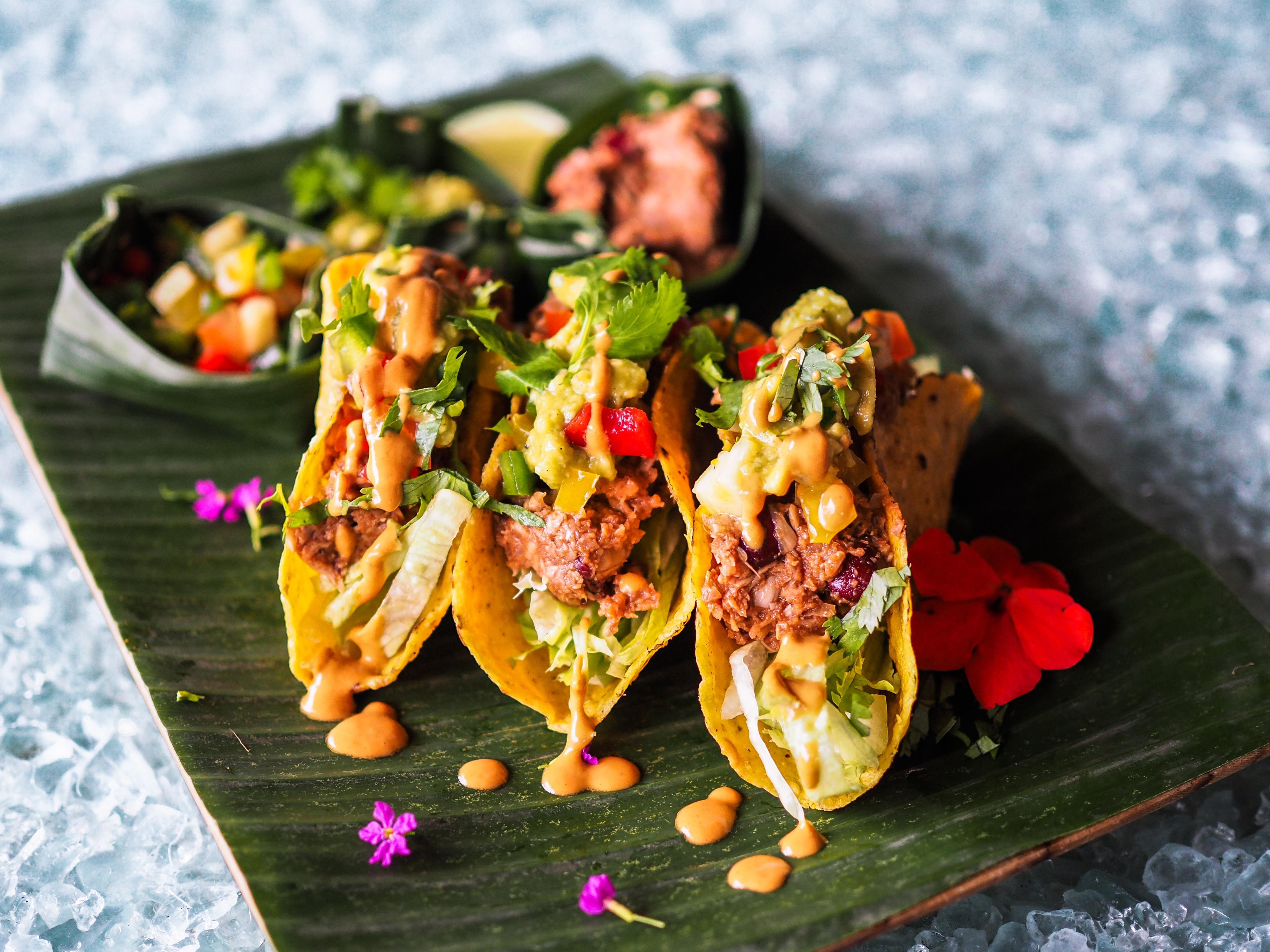 Jackfruit taco