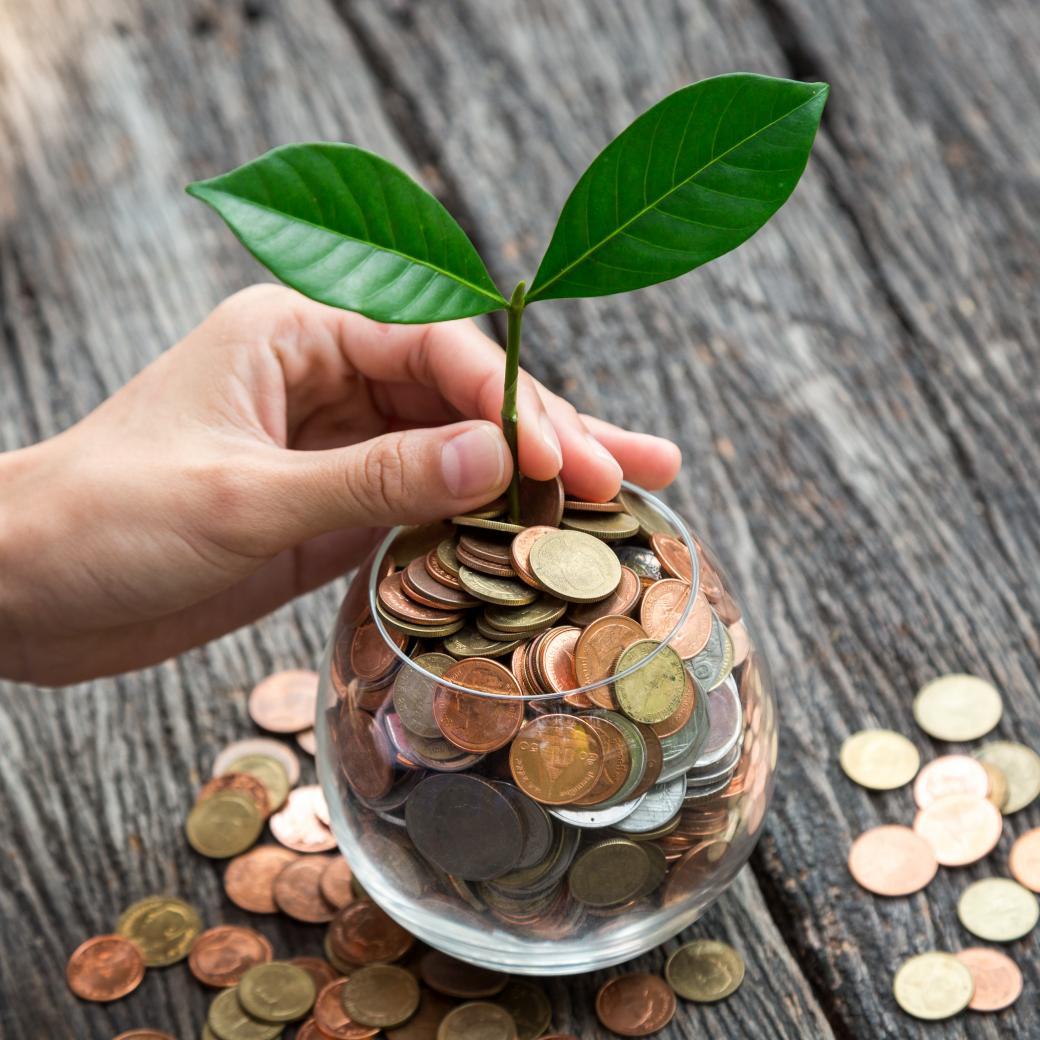 Geld doet plantje groeien