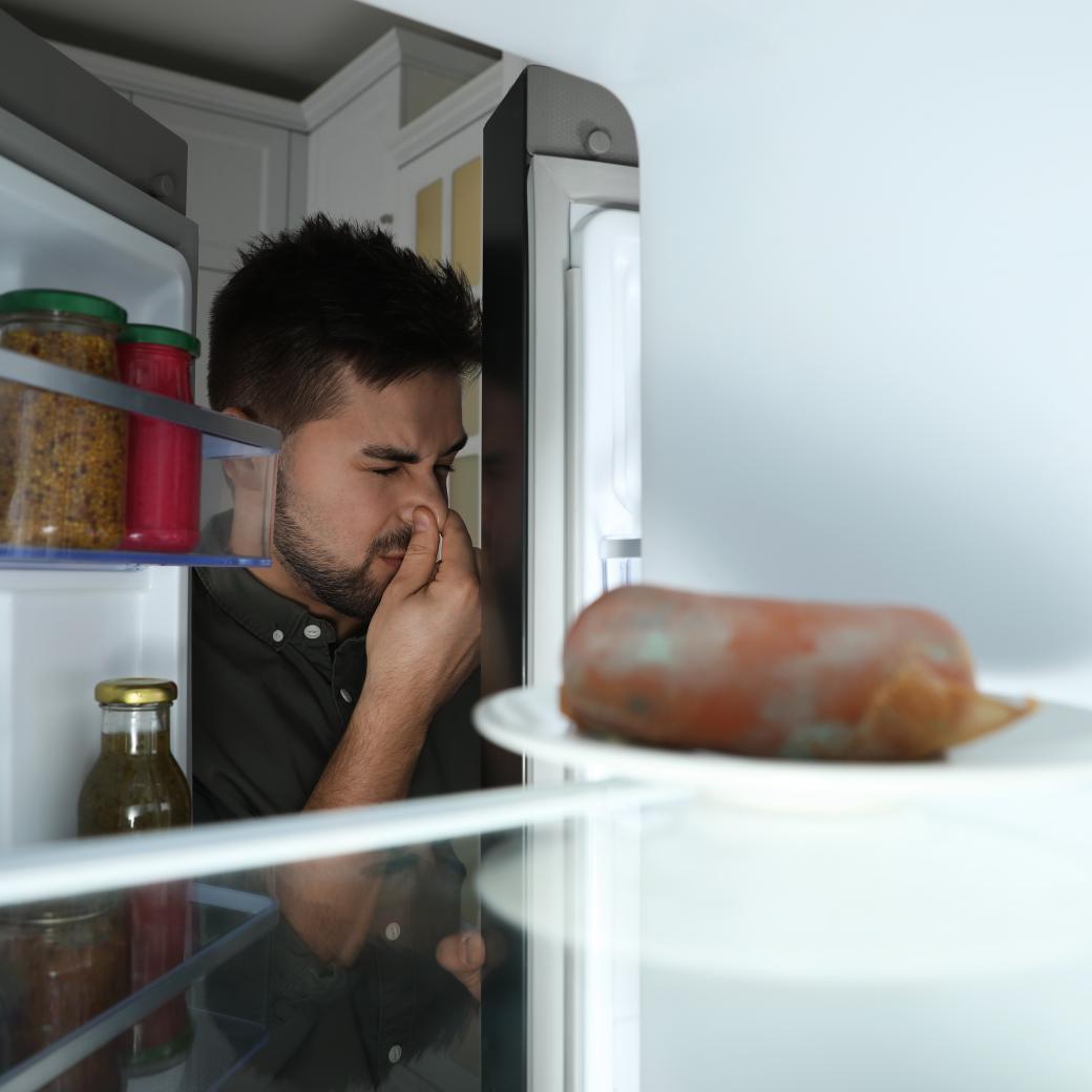 Stinky bedrorven eten in de frigo